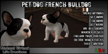 PET DOG French Bulldog
