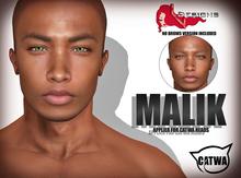 ::LV:. Malik Catwa Applier - Chocolata/07