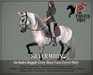 """The Painted Pony~ """"Silver Moon"""" Gray Coat for *WH* Riding Horse"""