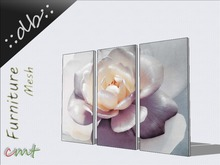 ::db::Wall Decoration Picture Frame set White Rose