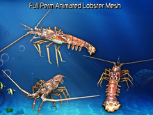 Full Perm Amazing Animated  Lobster High Quality Mesh