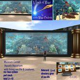 Museum Corner Aqautic Life Aqaurium  Box