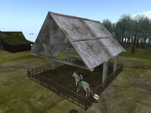 corral gift for water horse teegle horses in general
