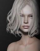 .QUENBY. - Genus  Shape for GENUS PROJECT HEAD