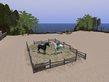 Corral for horses WHRH WATER HORSE TEEGLE