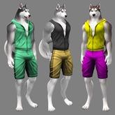 JOMO Husky Male Sportswear