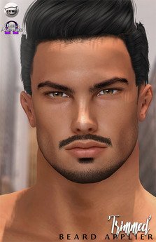 Superb Second Life Marketplace Birth Trimmed Beard Applier Schematic Wiring Diagrams Amerangerunnerswayorg