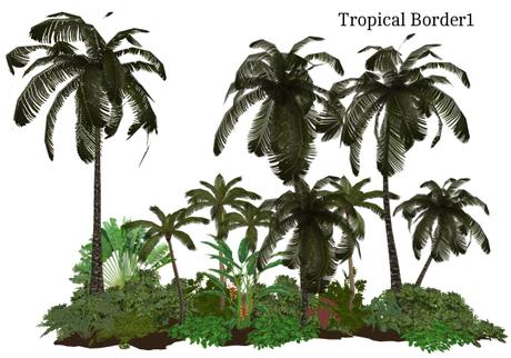Tropical Border1(17x5, 32L)
