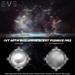 E.v.e ivy with bioluminescent fungus m02 w w