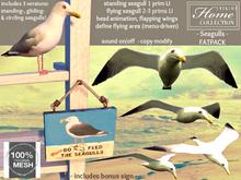 Seagull, Gull, FATPACK