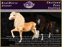 *E* RealHorse Avatar V2 - Shetland Stallion PG