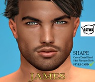 TMS - JAMES SHAPE AND STYLECARD*