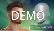 -VA-DEMO-DEMO VISTA BENTO HEAD GERARD-BOXs1