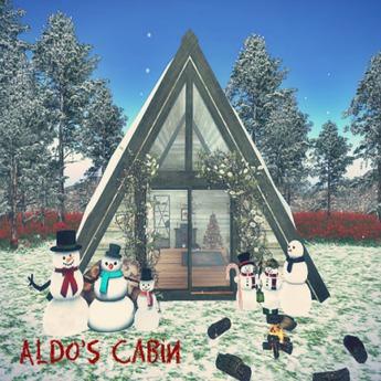 Aldo's Cabin(9LI, 12x12) TRANSFER ONLY