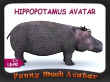 HIPPOPOTAMUS AVATAR