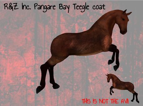 R&Z Inc. Non Mealy Pangare Light Bay  Teegle coat