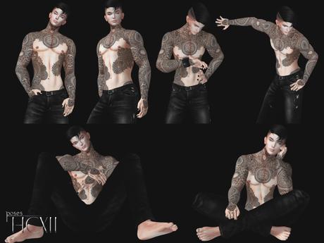 HCXII - Male Pose I wish I care [ Bento Pose ]