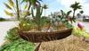 CJ Garden Boat Tropical c/m