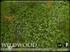 Heart - Wildwood - Forest Floor - Flowers Modules 1