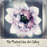 Floating Lotus Art Gallery Poster