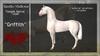 "*RMH* Teegle Horse Coat ""Griffith"" - Box"