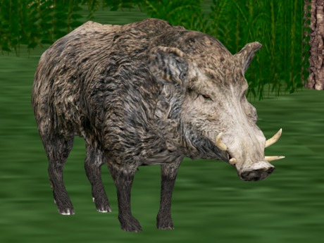 *NEW* Animated-Mesh Peaceful (Roaming) BOAR and Gor-TARSK