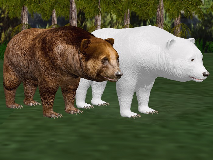 *NEW* Animated-Mesh Peaceful (Roaming) BEARs