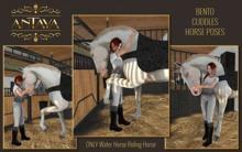 :: ANTAYA :: WHRH Bento cuddles horse poses (wear me)