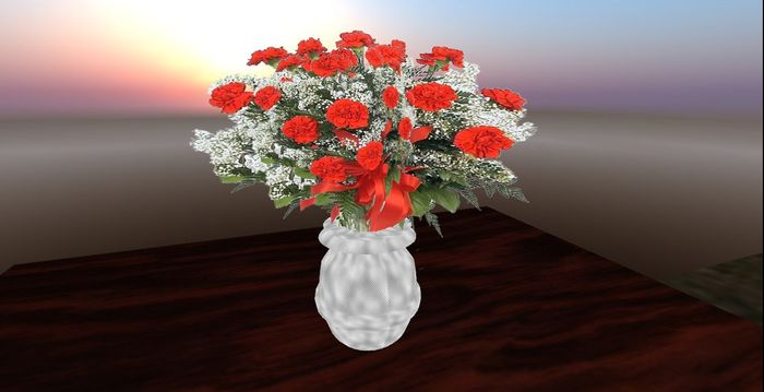 Red Carnations with Baby's Breath - mod/trans