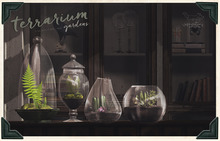 {vespertine}- terrarium gardens FATPACK