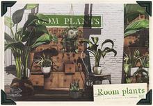 {vespertine}- room plants FATPACK