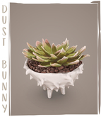 dust bunny . spiked ceramic plant