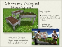 Strawberry picking set