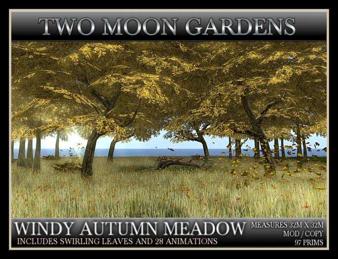 TMG - WINDY AUTUMN MEADOW. Landscaped Woodland Forest in the fall