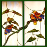 Tropical Birds Stained Glass