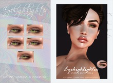 .KC. Eyehighlighter Collection . Fatpack.