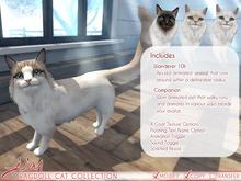 JIAN Ragdoll Cat Collection