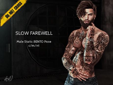 -DNC- Slow Farewell - Male BENTO Pose