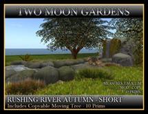 RUSHING RIVER - AUTUMN - SHORT VERSION. Landscape Garden stream with waterfall