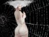 Cobwebbed 2