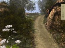 l ROOTS l  Dirt Path