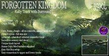 Forgotten Kingdom Rally Track