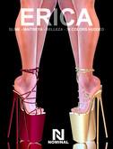 NOMINAL: ERICA PLATFORMS & HUD