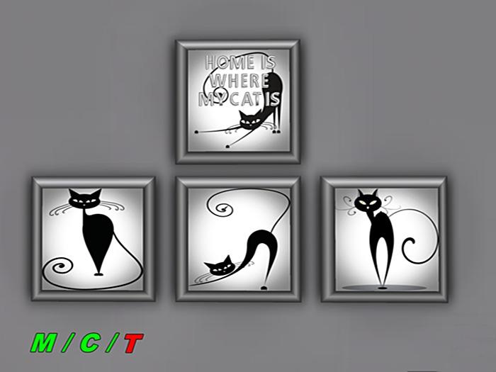 Cat picture *BOX*