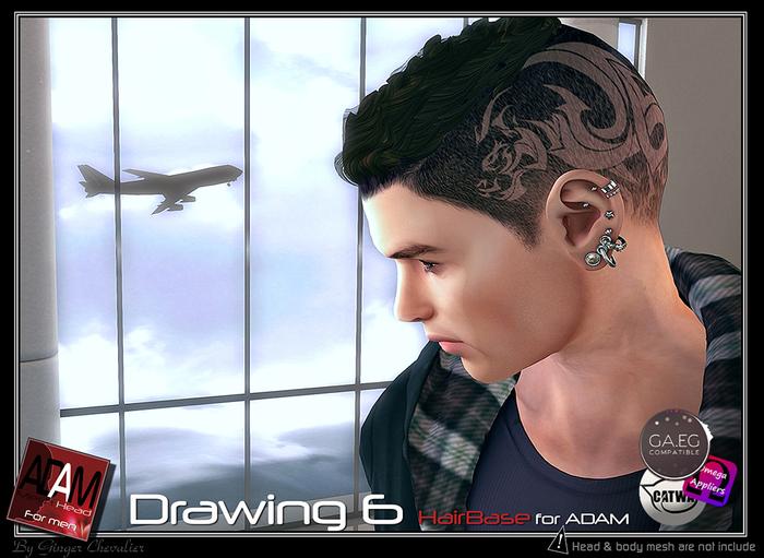 Adam-Hairbase drawing 6