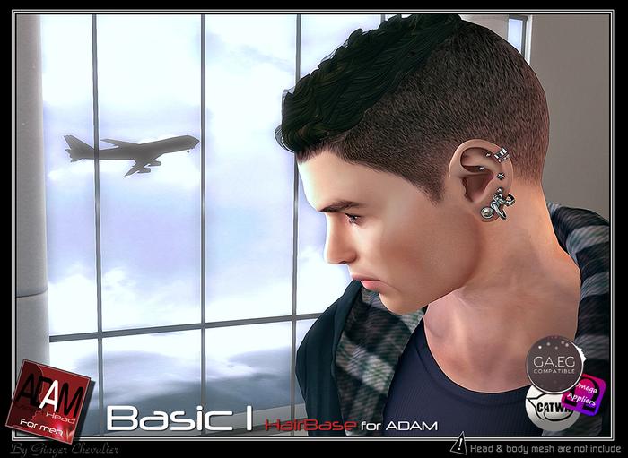 Adam-Hairbase simple 1