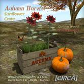 "[CIRCA] - ""Autumn Harvest"" - Sunflower Crate - Golden Wood & Red Flowers"
