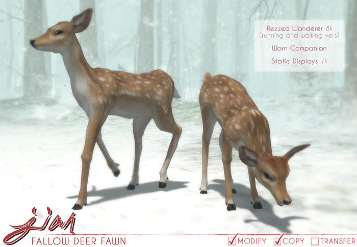 JIAN Fallow Deer Fawn