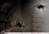 JIAN House Spider Collection