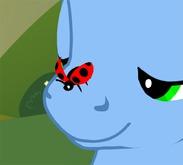 [FP] Ladybug [Box]